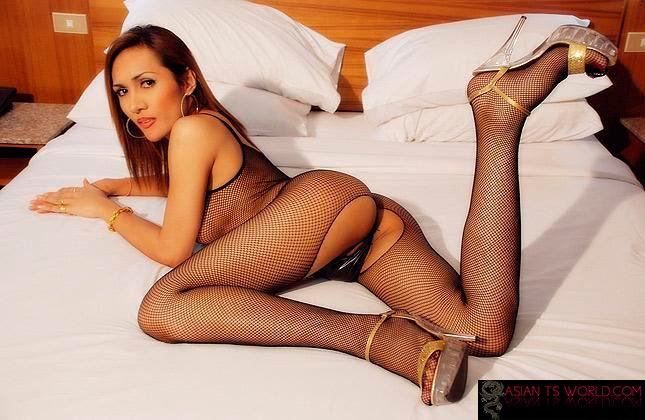 Shemale in a body stocking